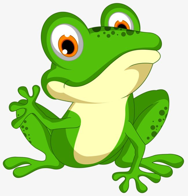 Green Frog, Frog Clipart, Frog, Cartoon PNG Transparent.