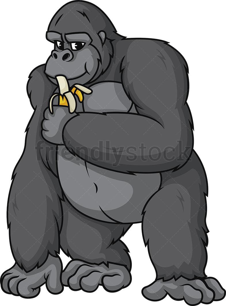 Gorilla Eating Banana.