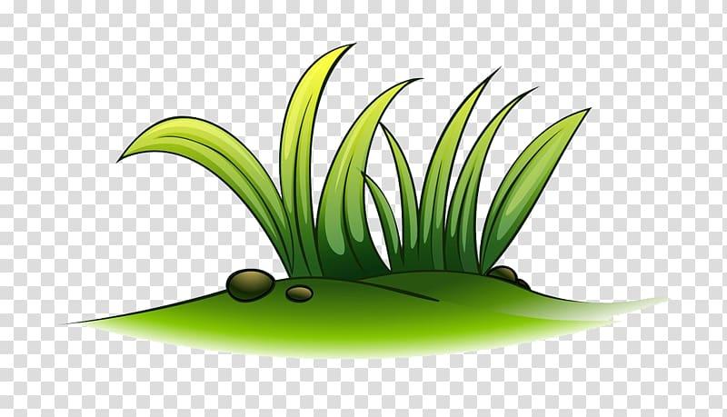 Cartoon , A plant of grass transparent background PNG.