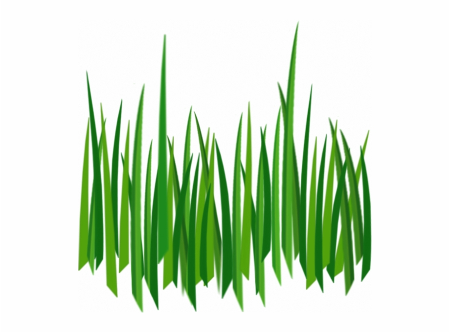 Cartoon Grass Transparent Background Free PNG Images & Clipart.