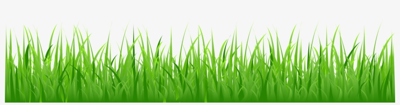 Cartoon Grass Png.