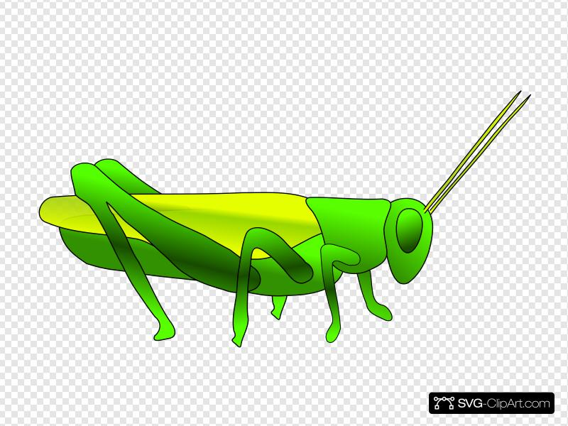 Cartoon Grasshopper Clip art, Icon and SVG.