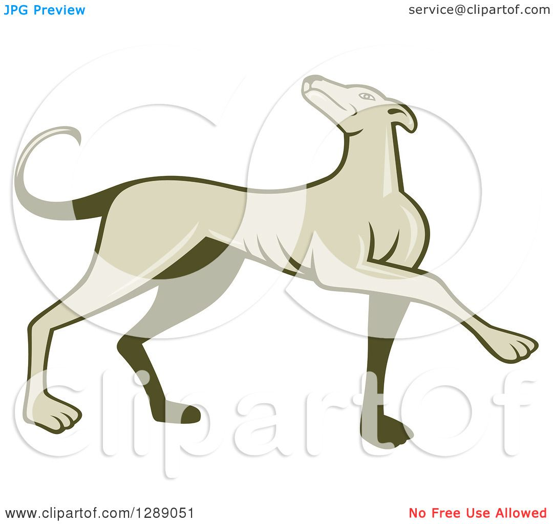Clipart of a Retro Cartoon Greyhound Dog Marching.