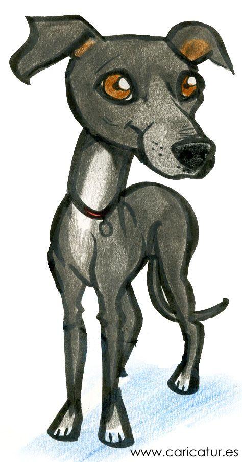Greyhound Cartoon.