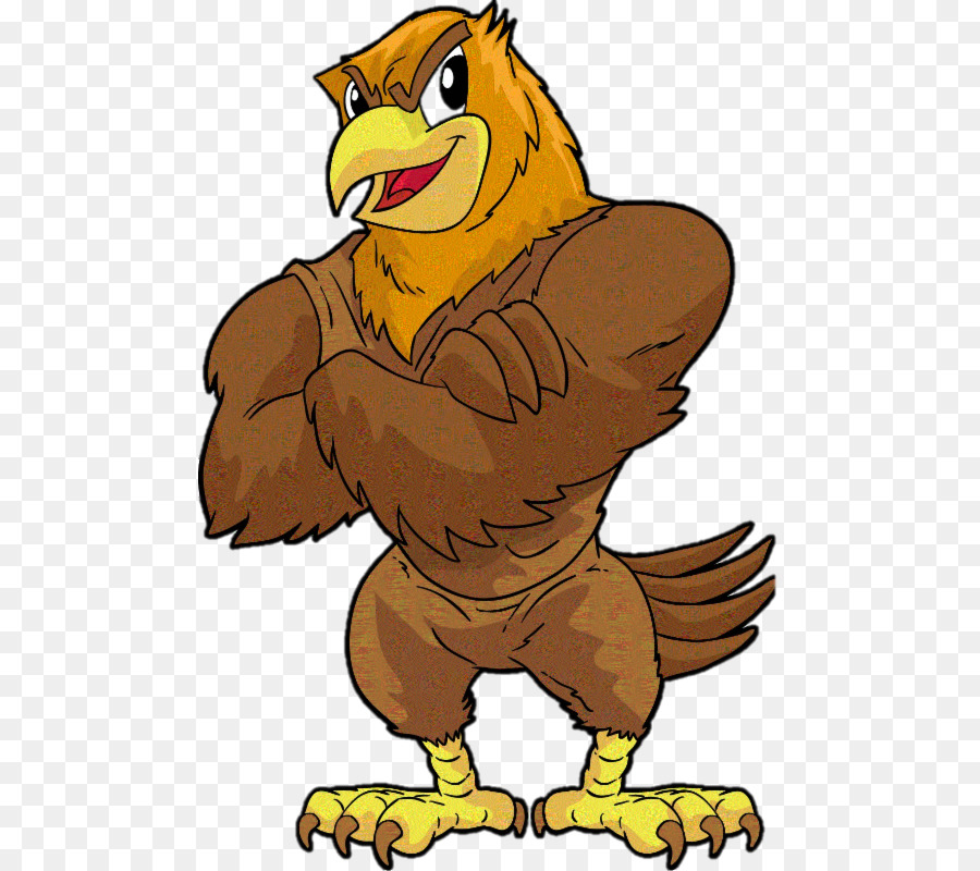 Eagle Cartoon clipart.