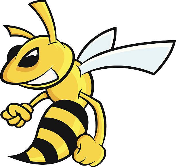 Best Hornet Illustrations, Royalty.