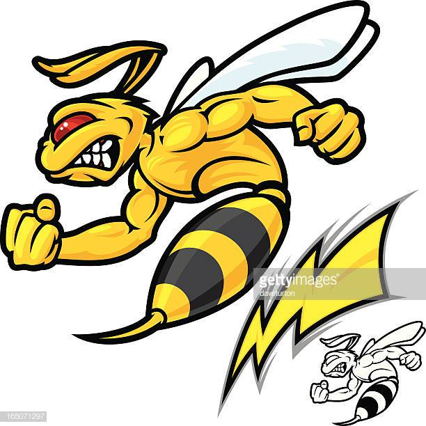 60 Top Wasp Stock Illustrations, Clip art, Cartoons, & Icons.