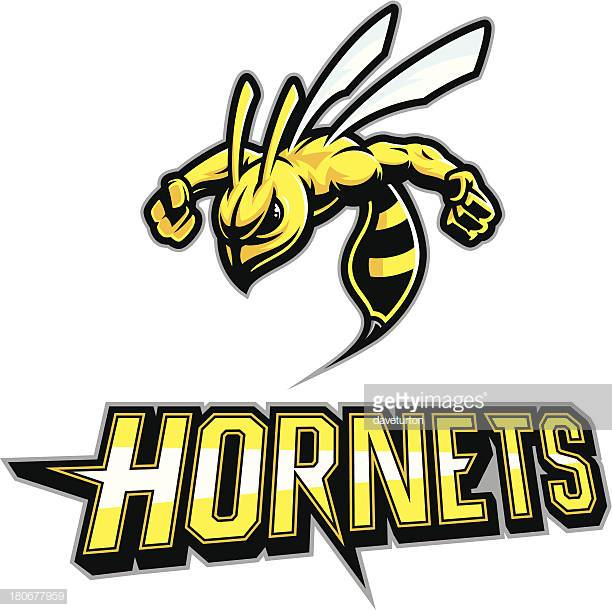 60 Top Hornet Stock Illustrations, Clip art, Cartoons, & Icons.