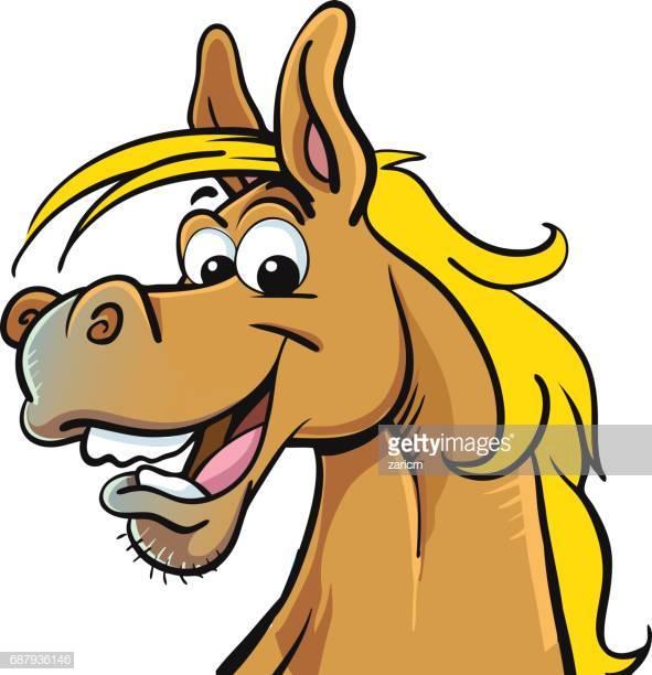 30 Top Funny Horses Stock Illustrations, Clip art, Cartoons, & Icons.