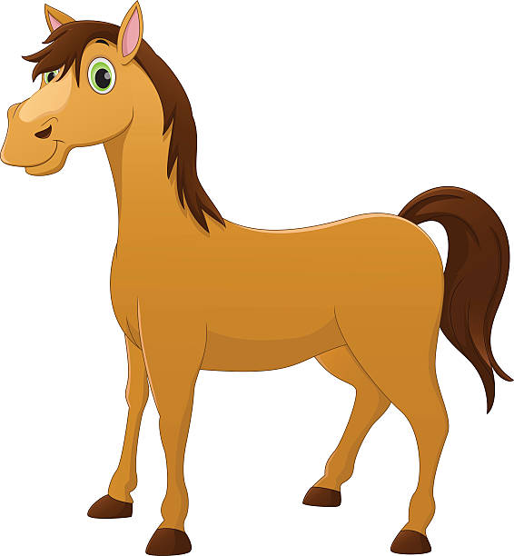 Best Horse Teeth Illustrations, Royalty.