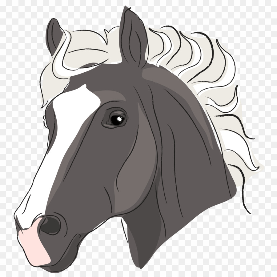 Horse Head Image Cartoon PNG Arabian Horse Mustang Clipart download.