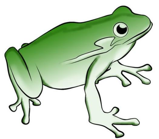 Jumping Frog Clip Art.