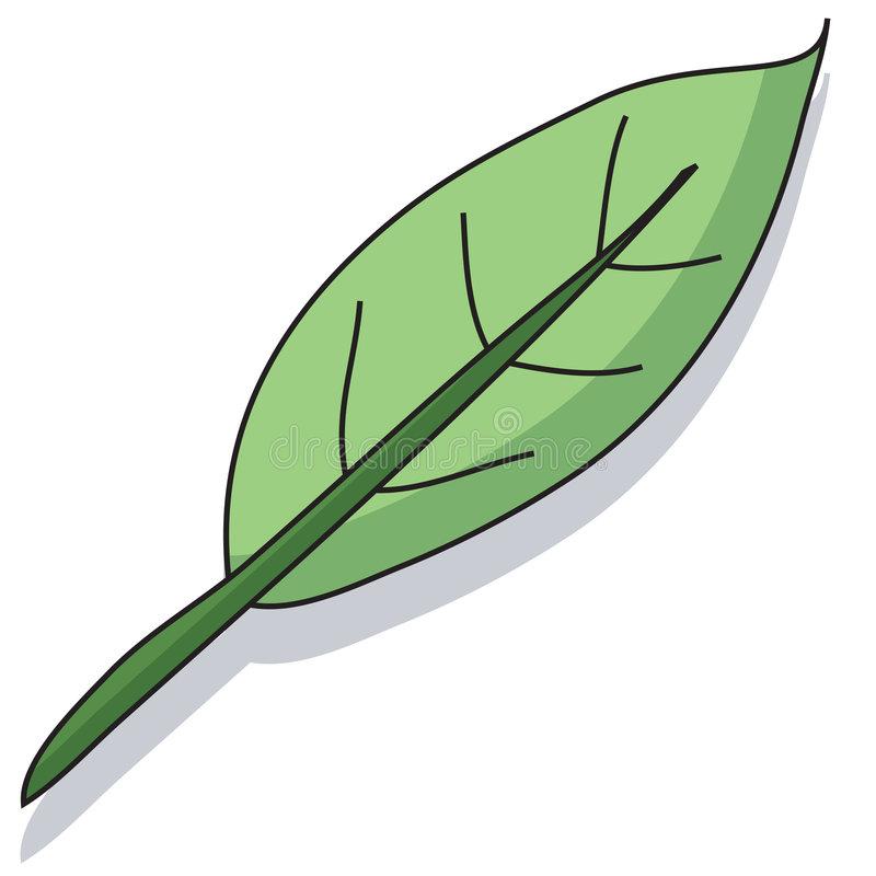 Cartoon Leaf Stock Illustrations.