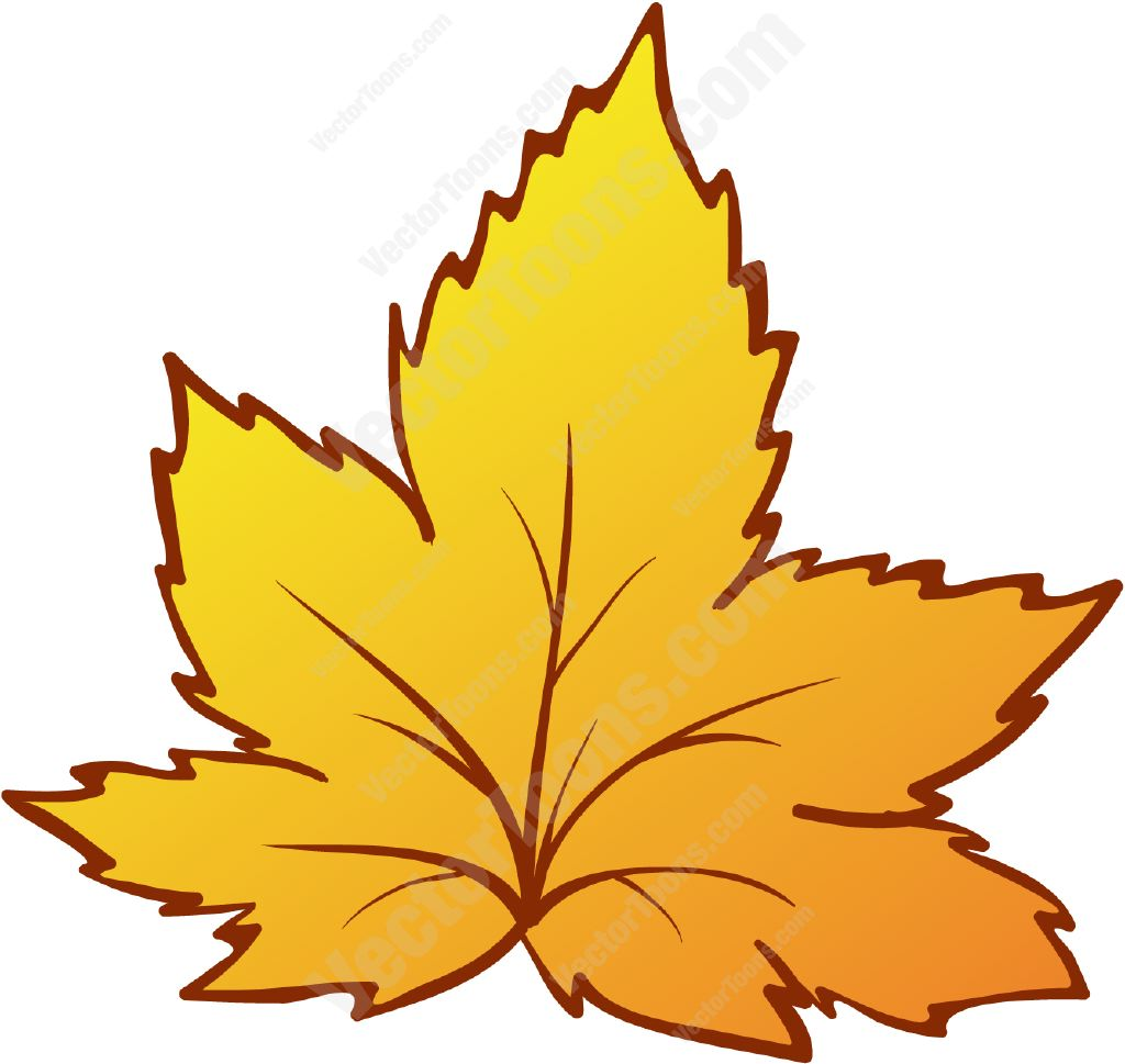 19 Leaf Vector Graphic Cartoon Images.