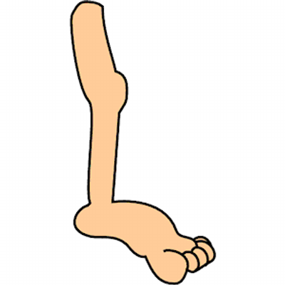 Cartoon legs png 1 » PNG Image.