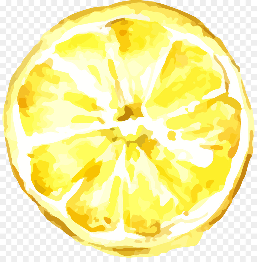 Lemon Drawing png download.