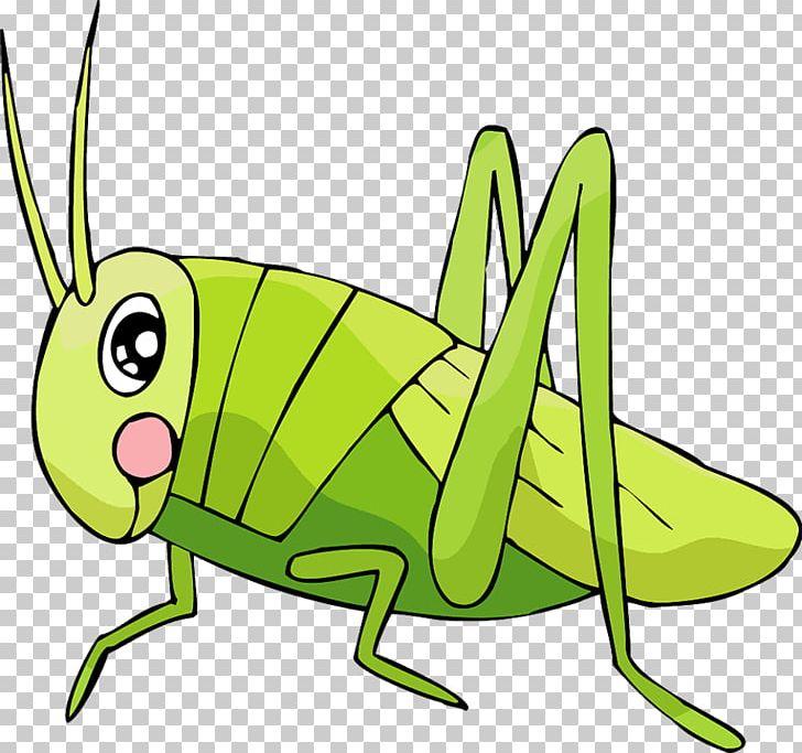 Grasshopper Insect Locust Cartoon PNG, Clipart, Animal, Artwork.