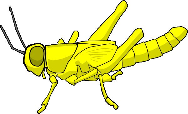 Yellow Cartoon Locust Clip Art at Clker.com.