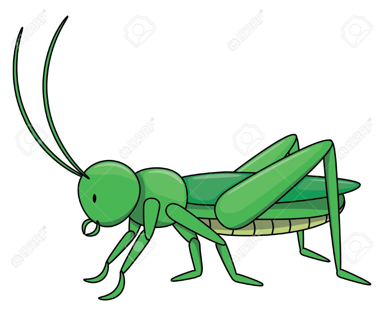 Locust cartoon illustration isolated white.