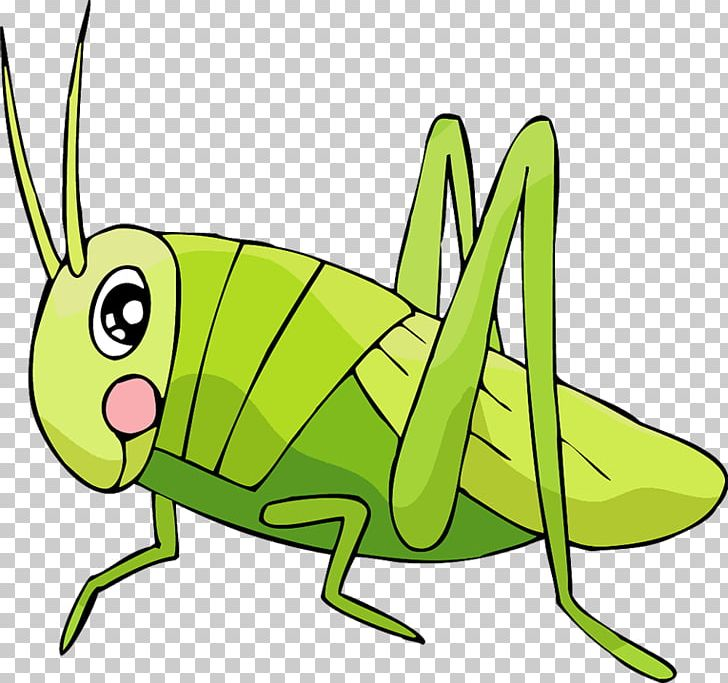 Grasshopper Insect Locust Cartoon PNG, Clipart, Animal.