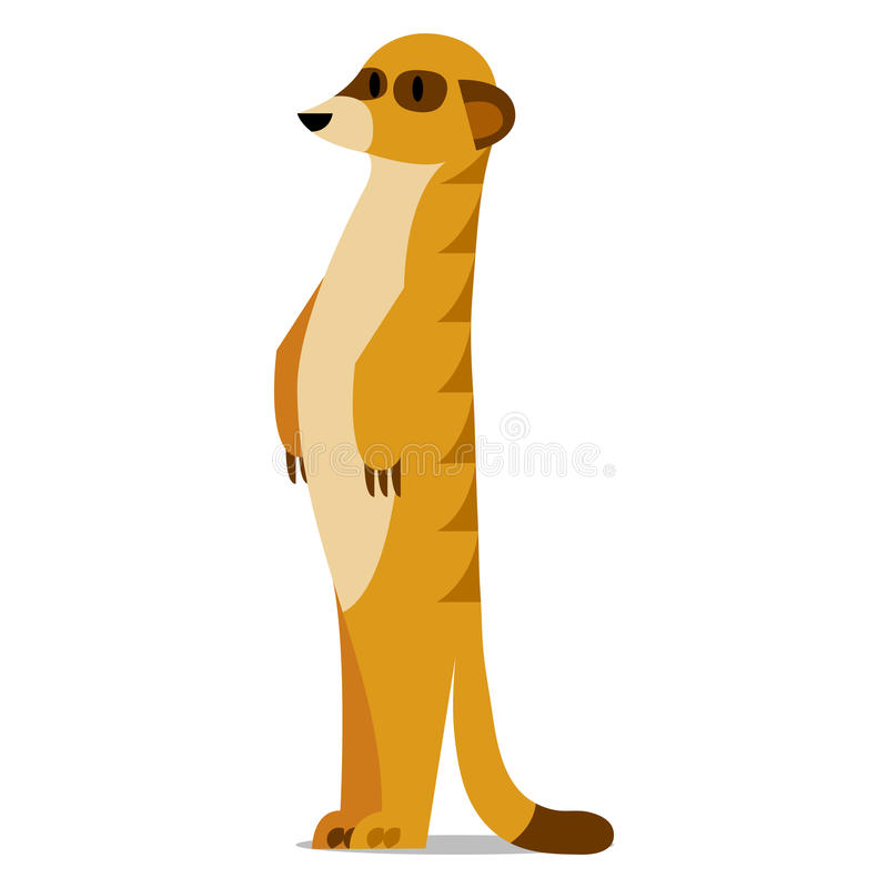Meerkat Stock Illustrations.