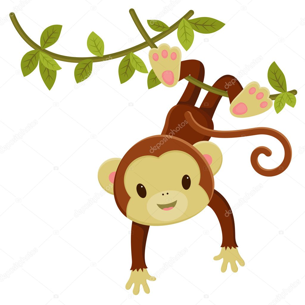 Pictures: cute cartoon monkey.