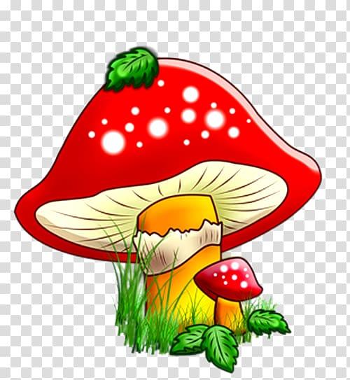 Mushroom Cartoon transparent background PNG cliparts free.