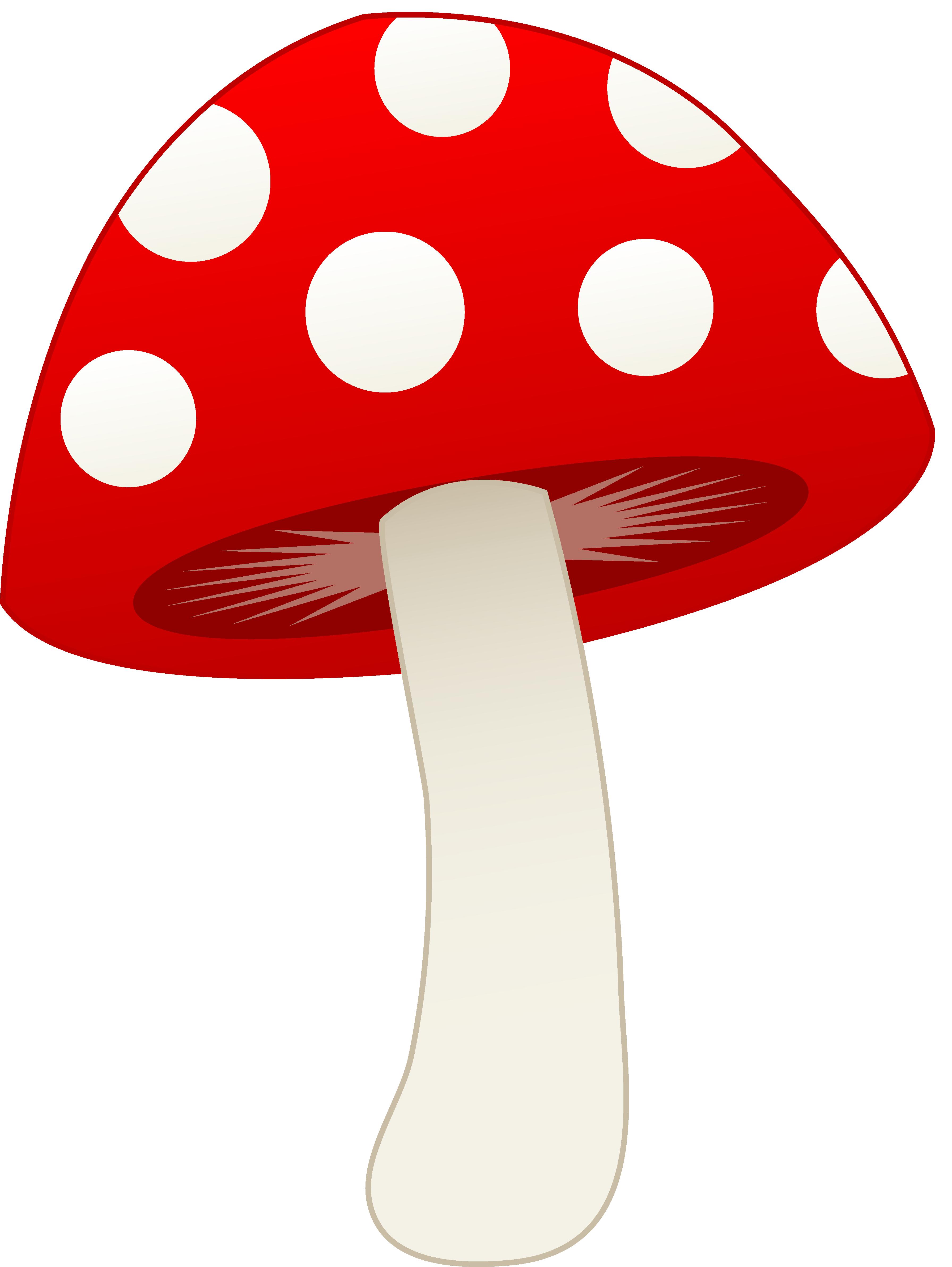Free Mushroom Cartoon, Download Free Clip Art, Free Clip Art.