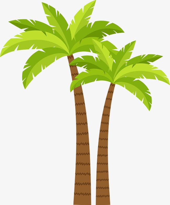 Coconut Tree Decoration Pattern PNG, Clipart, Beach, Beach Coconut.