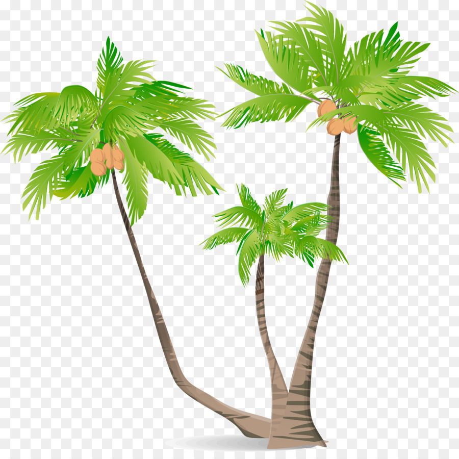 Cartoon Palm Tree png download.
