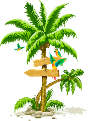 Palm Tree Png Image Cartoon Birds Beach.