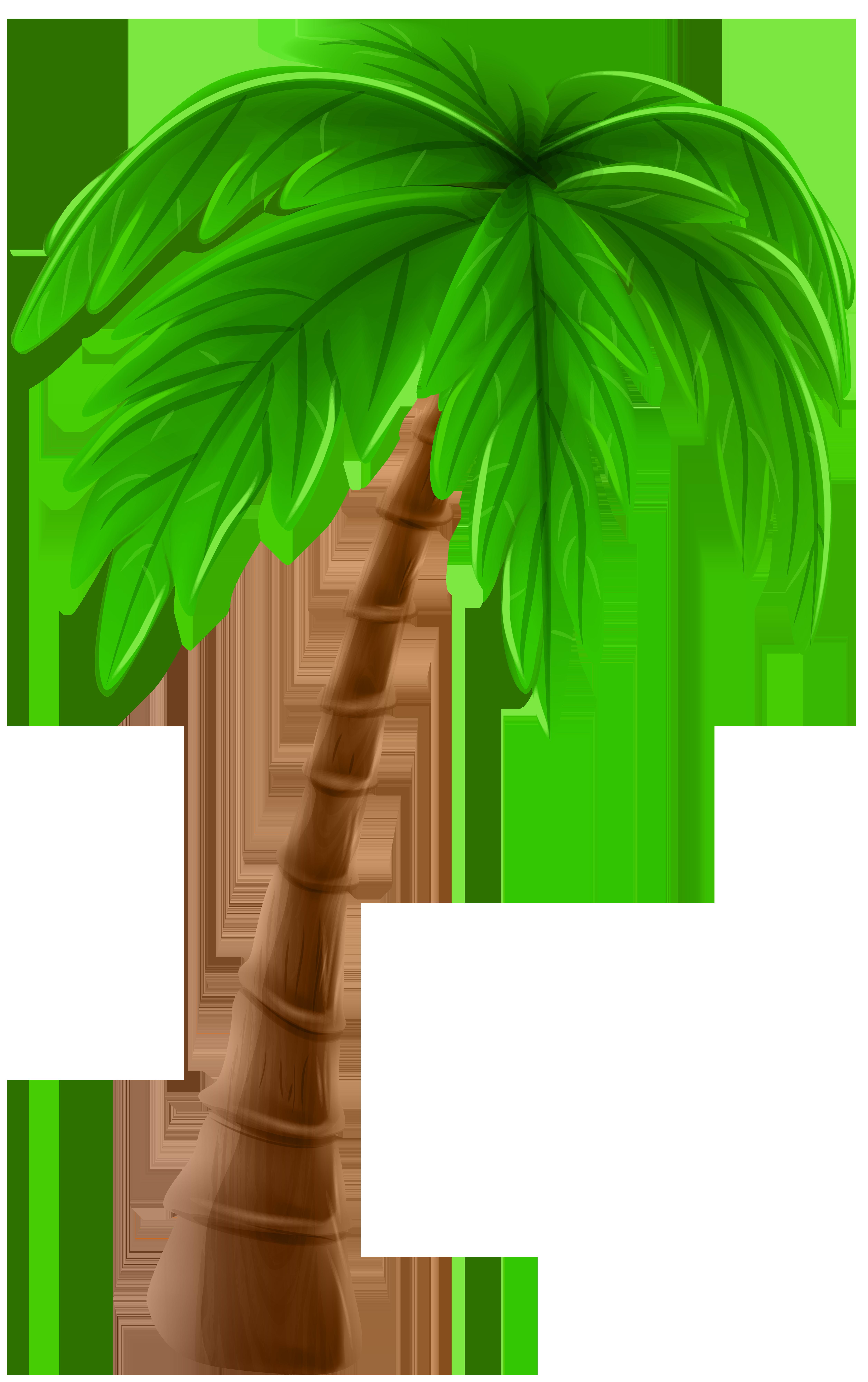 Palm Tree Cartoon PNG Clip Art Image.