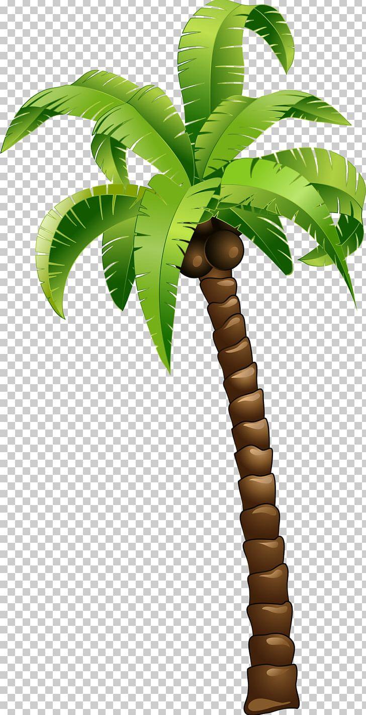 Coconut Tree PNG, Clipart, Arecales, Balloon Cartoon, Cartoon.