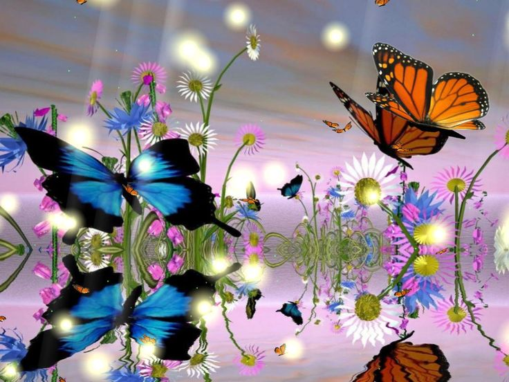 Animated Flowers And Butterflies.