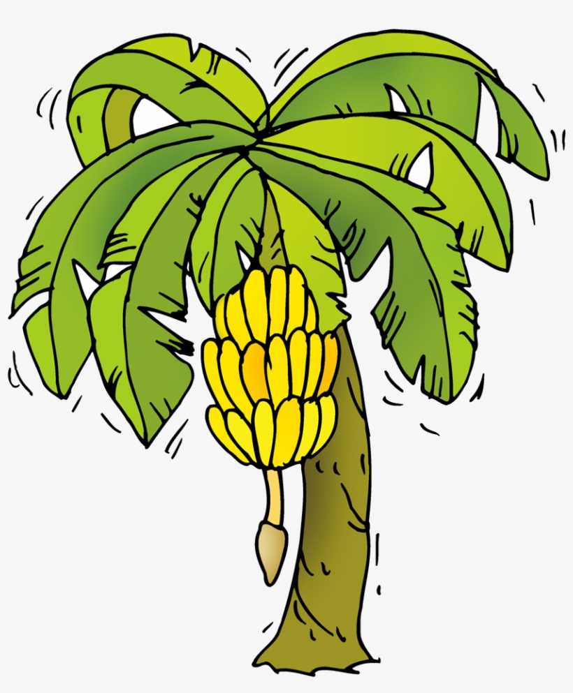 Banana Tree Cartoon Png PNG Image.