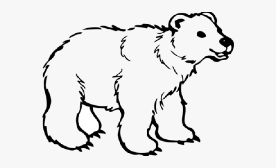 Polar Bear Clipart Simple.