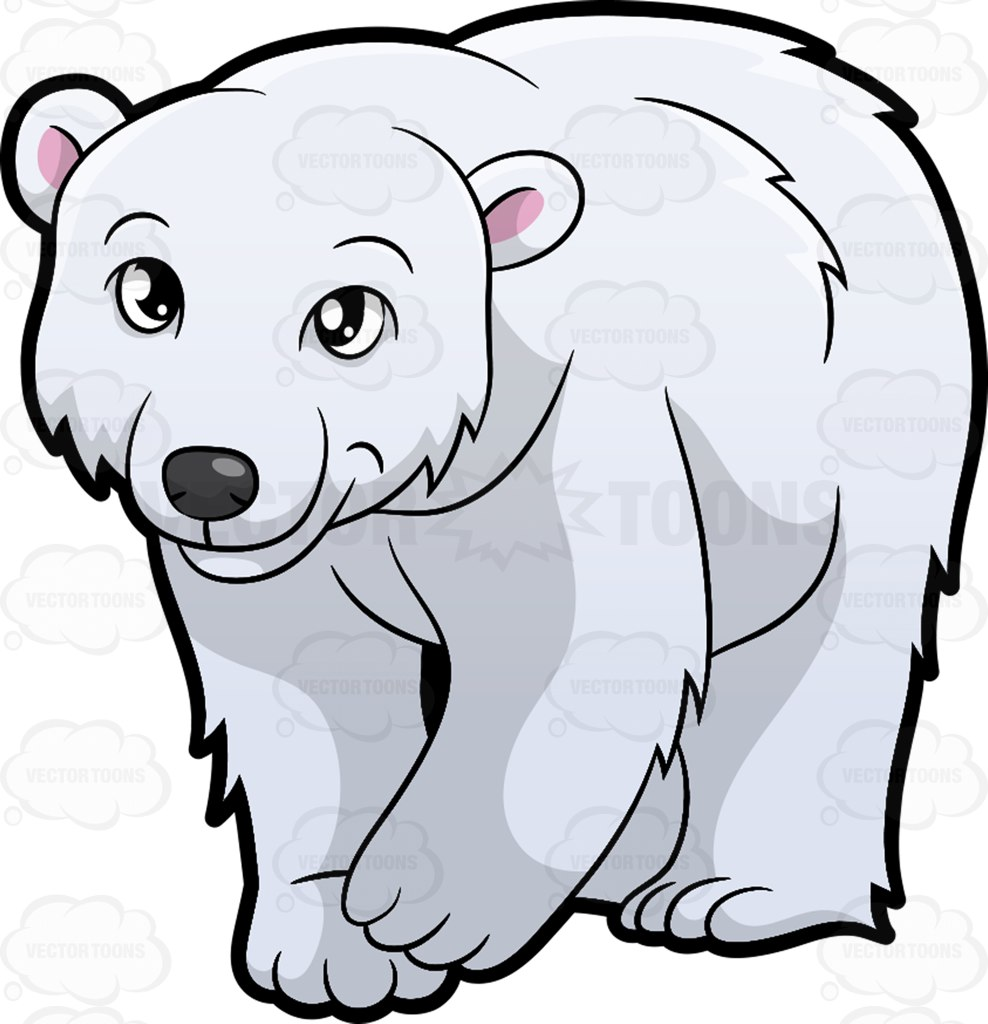 Cartoon clipart polar bear pencil and in color cartoon.