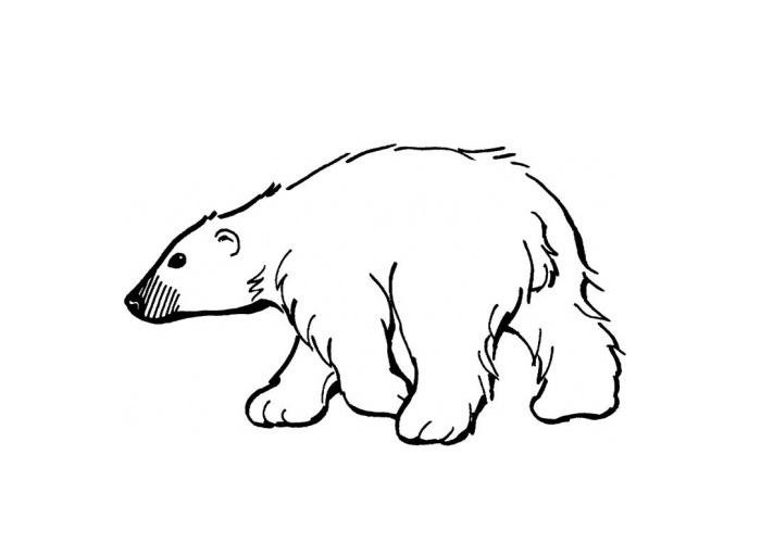 Free Cartoon Pictures Of Polar Bears, Download Free Clip Art, Free.