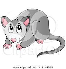 Image result for cartoon possum.