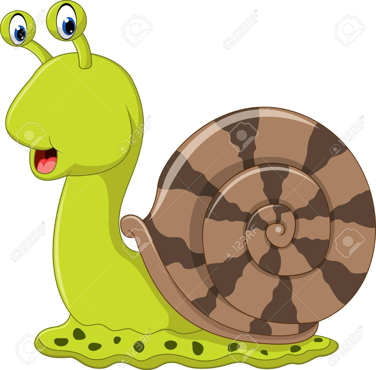 Cute snail cartoon.