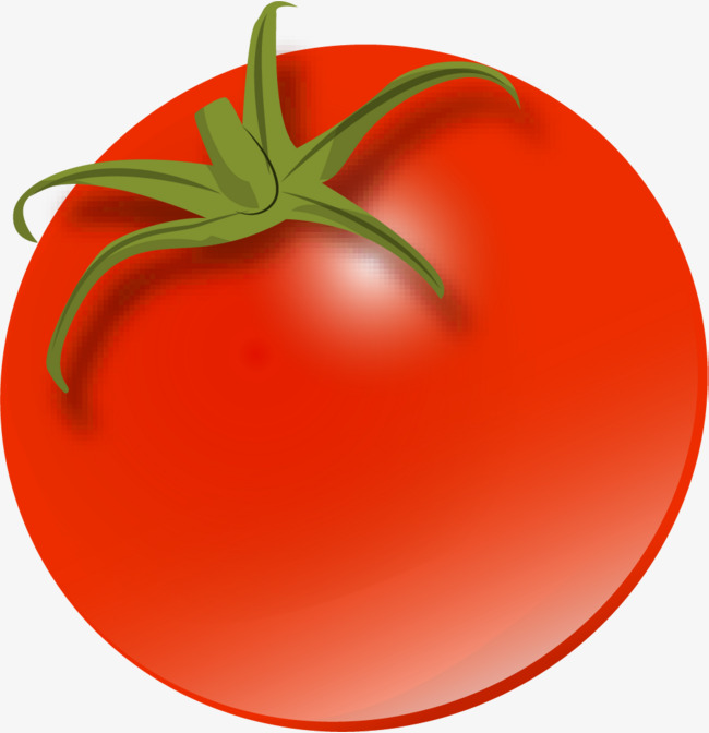 Collection of 14 free Tomatoes clipart cartoon bill clipart dollar.