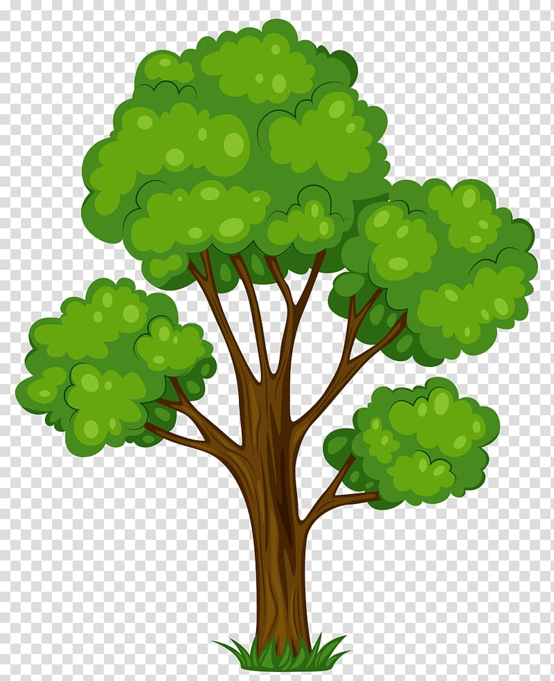 Tree Cartoon , Tree transparent background PNG clipart.