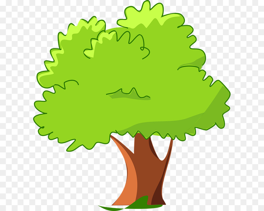 Oak Tree Drawing png download.