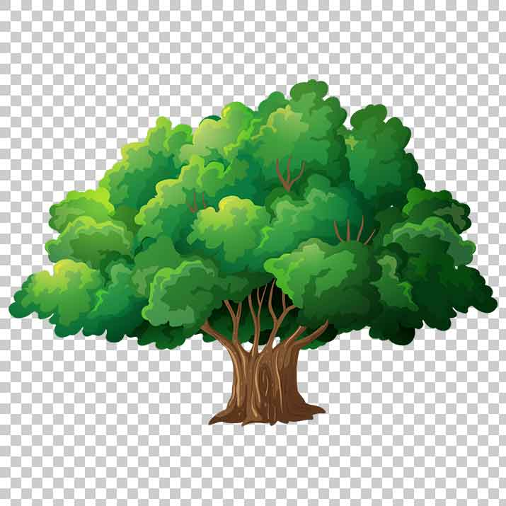 Cartoon Green Tree PNG Clipart Free Download searchpng.com.