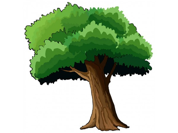 Cartoon Tree Png (96+ images in Collection) Page 1.