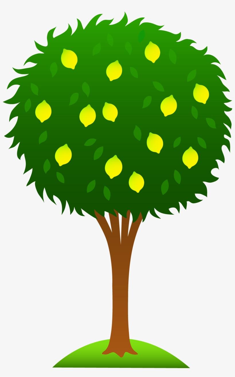 Cartoon Tree Clipart Pinterest.