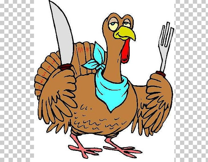 Turkey Pilgrim Thanksgiving Dinner PNG, Clipart, Artwork, Beak, Bird.