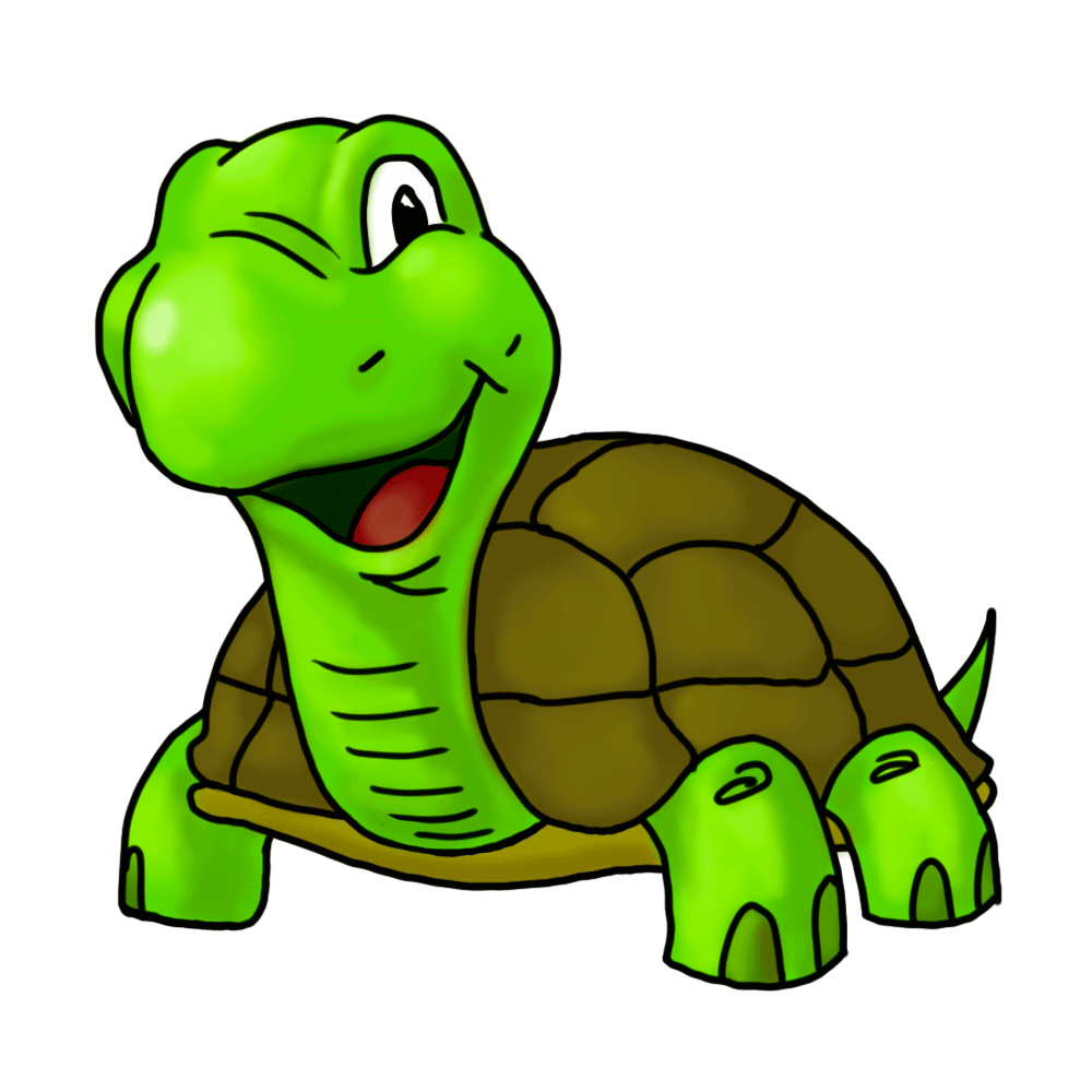 50+ Clipart Turtles.