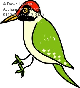 Clipart Image of A Cartoon Green Woodpecker.
