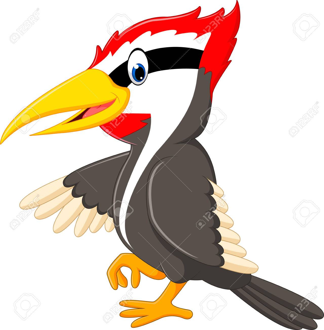 Woodpecker bird cartoon.